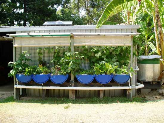 easy diy aquaponics system review can andrew endres book work